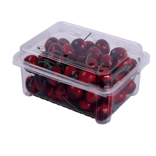 plastic clamshell packaging For Strawberry